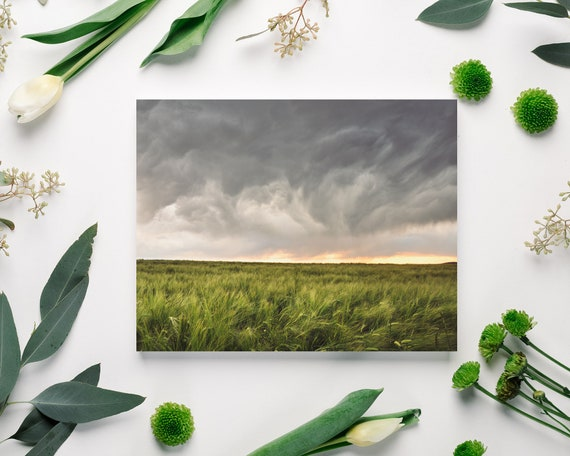 Wheat Field Landscape - on Sale!