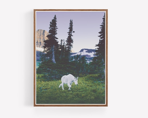"""Twilight Mountain Goat"""