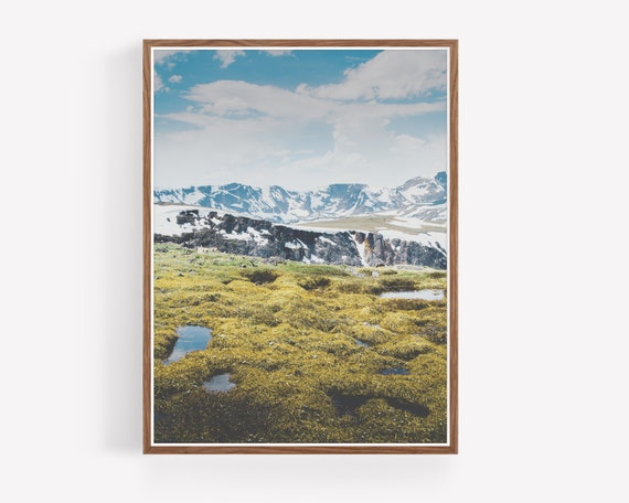 """Alpine Marshes"""