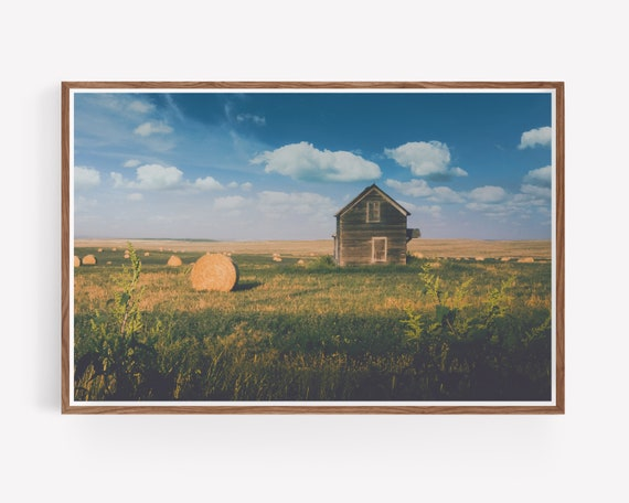 Abandoned Farmhouse and Hayfield Landscape