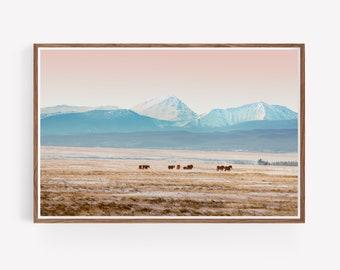 Big Hole Montana Landscape