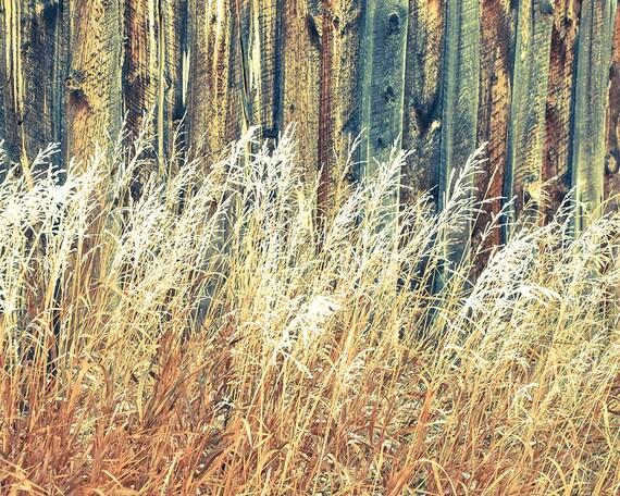 """Against the Grain"" - fine art photography"