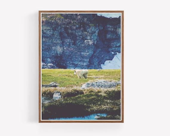 """Mountain Wanderer"""