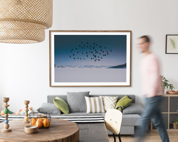 """Snow Birds"""