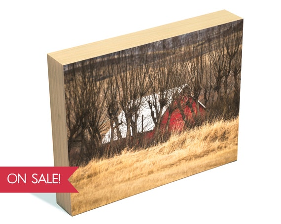 In the Willows - landscape wall art