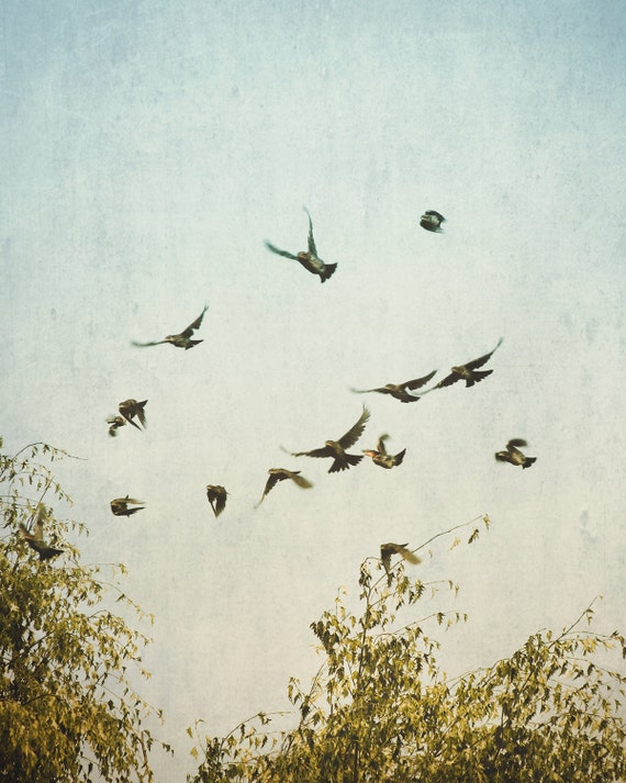 """A Feeling of Change"" - fine art photography"