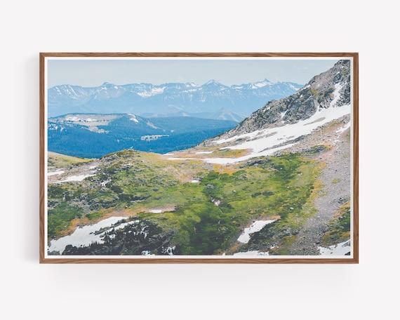"""""""Alpine Mosses"""""""
