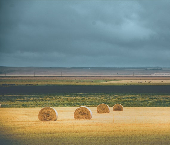 Hay Field Rain - landscape photography