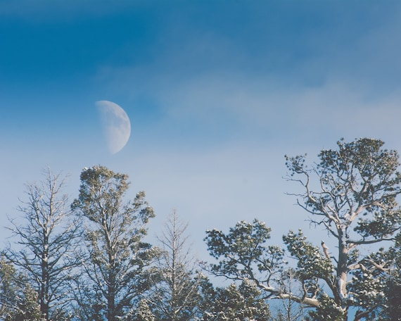 """Winter Moon"" - landscape photography"