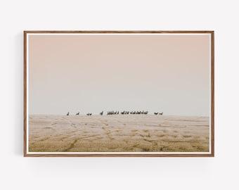 Deer in frosty field Landscape