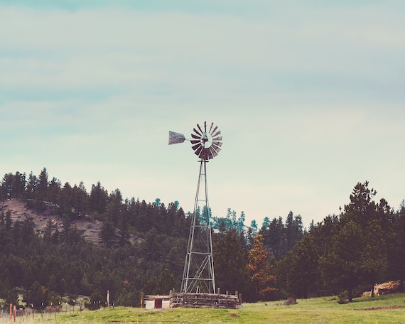 """""""Meadow Windmill"""""""