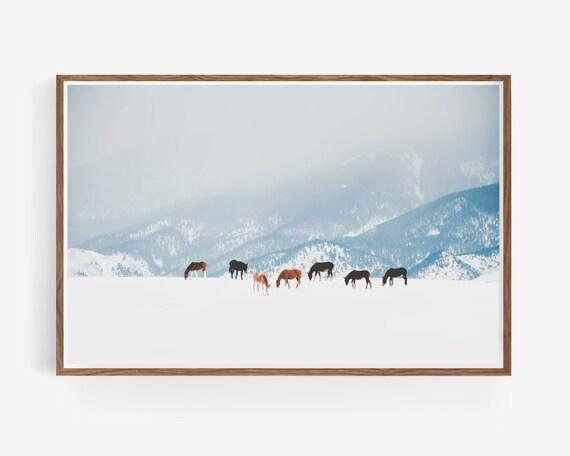 """""""Winter Pastures"""""""
