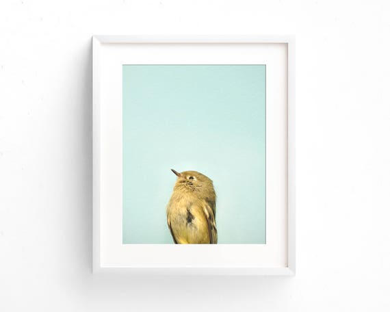 """""""Little Lovely"""" - fine art photography"""