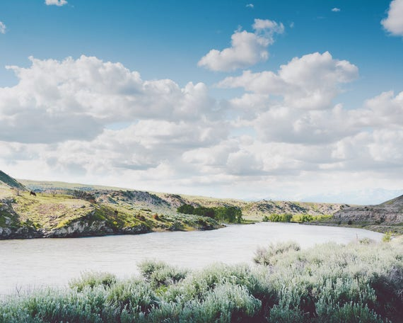 """A Bend in the Yellowstone"" - landscape photography"