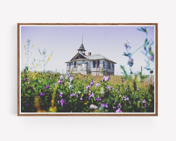 """Schoolhouse Wildflowers"""