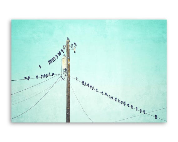 """""""Birds of a Feather"""" - photograph on canvas"""