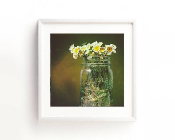 """Daisies"" - fine art photography"