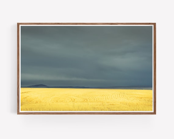 """Wheat Field and Storm"""