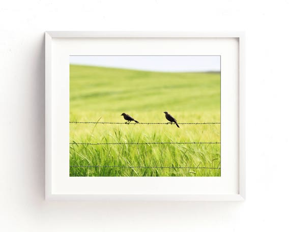 """Two in the Barley"" - fine art photography"