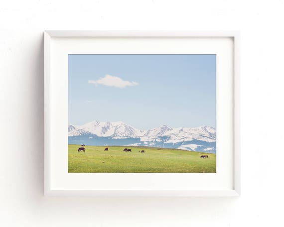 """Mountain Meadow"" - landscape photography"
