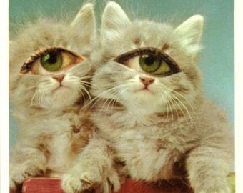 Original Collage, Big Eye Art, Cat Freak, Kawaii Art, Kitsch Artwork, Freaky Kitten, Creepy Cute Kitty