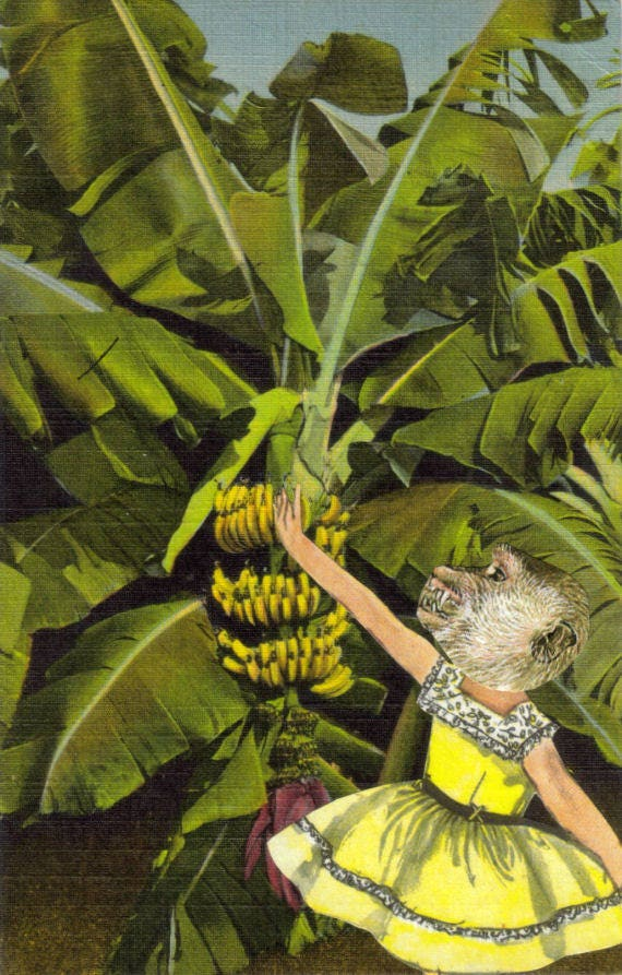 Original,Collage,Art,,Banana,Chimp,,Chimpanzee,Artwork,Original Collage Art, Banana Chimp, Chimpanzee Artwork