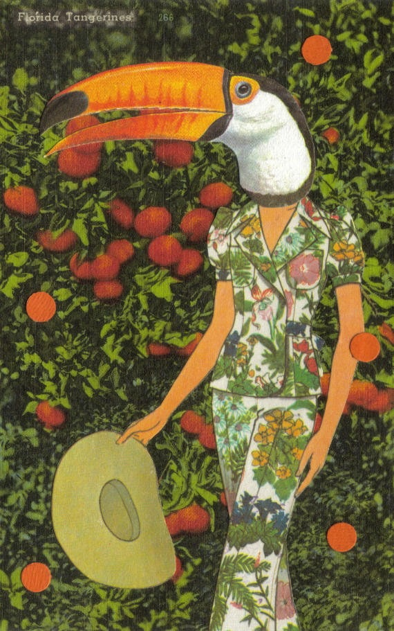 Original,Collage,Art,,Toco,Toucan,Tangerine,Artwork,Original Collage Art, Toco Toucan Tangerine Artwork