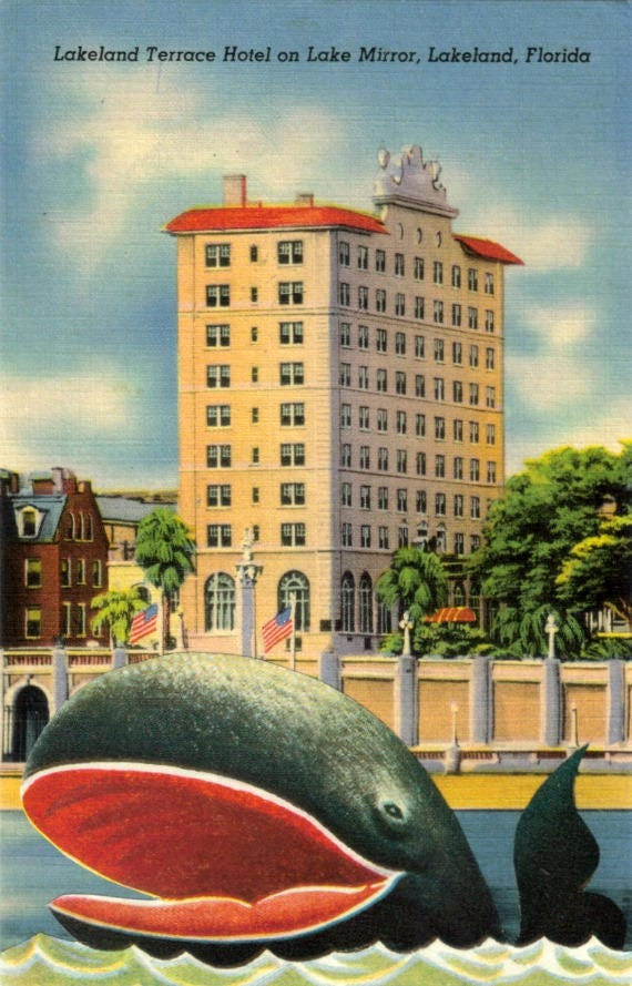 Original,Collage,Art,,Retro,Postcard,,Whale,Artwork,Original Collage Art, Retro Postcard, Whale Artwork