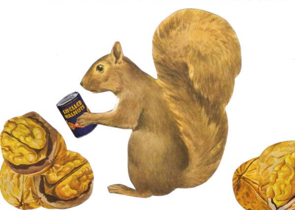 Original,Collage,Art,,Squirrel,Nut,Artwork,Original Collage Art, Squirrel Nut Artwork