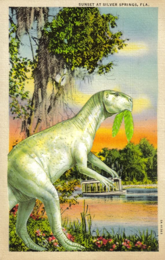Original,Collage,Art,,Florida,Dinosaur,Artwork,Original Collage Art, Florida Dinosaur Artwork
