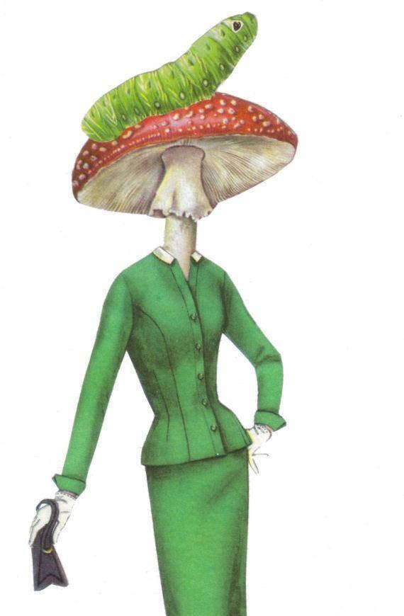 Original,Collage,Art,,Amanita,Muscaria,,Fly,Agaric,Mushroom,Artwork,Original Collage Art, Amanita Muscaria, Fly Agaric Mushroom Artwork