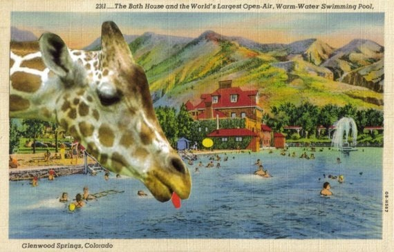Original,Collage,,Funny,Giraffe,Artwork,Original Collage, Funny Giraffe Artwork
