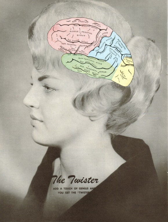 Original,Collage,Art,,Anatomical,Brain,Artwork,Original Collage Art, Anatomical Brain Artwork