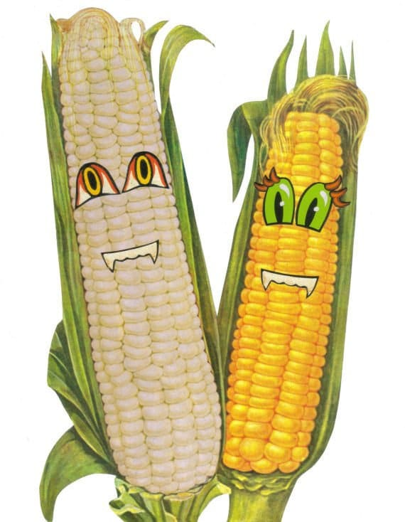 Original,Collage,Art,,Corny,Corn,Artwork,Original Collage Art, Corny Corn Artwork