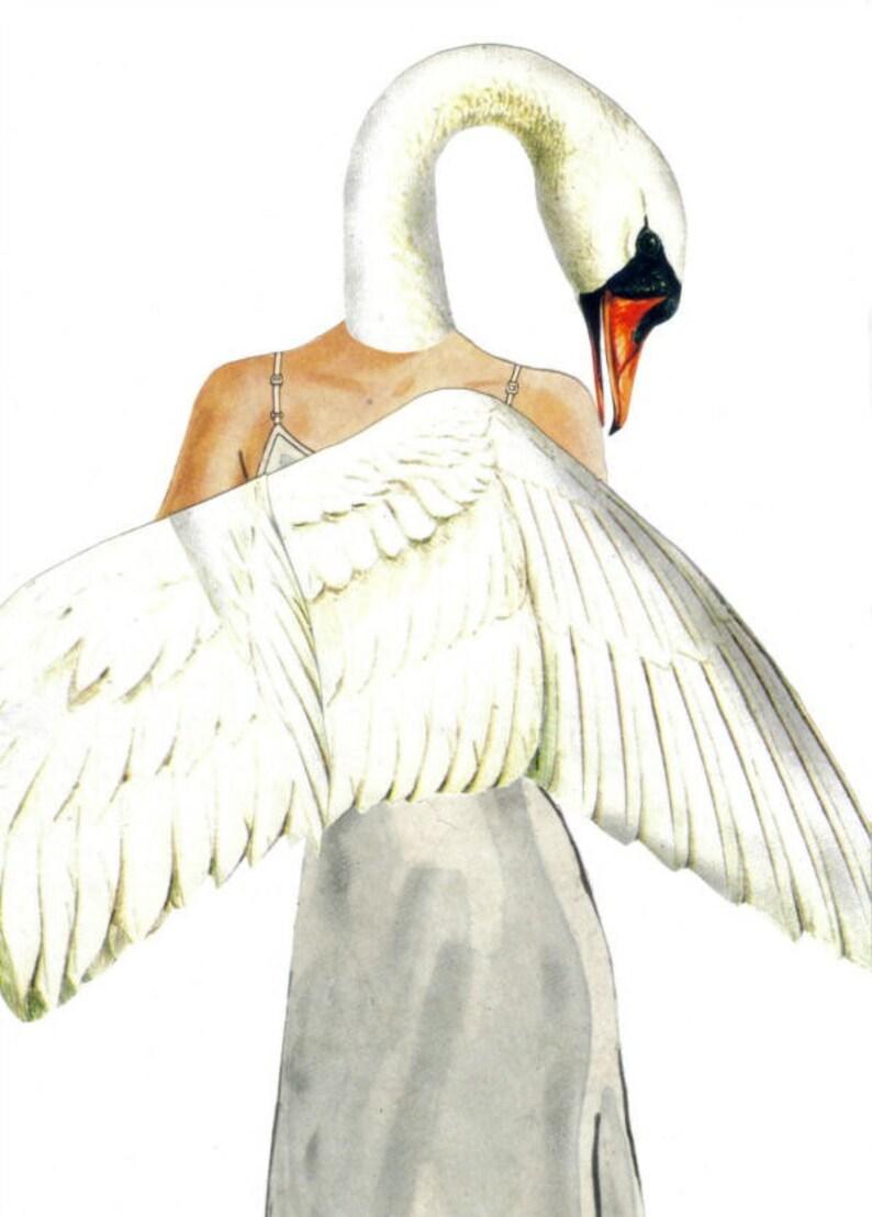 Original Collage Artwork White Swan Art Fantasy Bird Fairy Tale Wall Art Anthropomorphic Bird