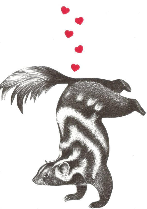 Original,Collage,Art,,Funny,Skunk,Artwork,Original Collage Art, Funny Skunk Artwork