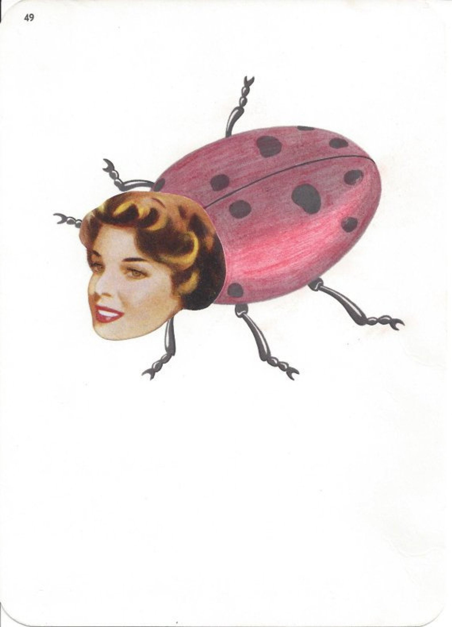 Original,Collage,Art,,Ladybug,Lady,Bug,Original Collage Art, Ladybug Art, Lady Bug