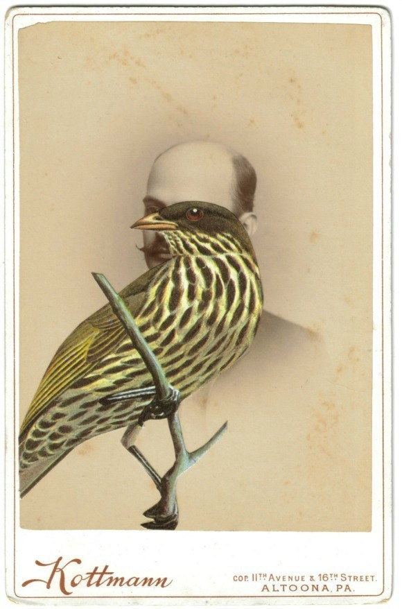 Original,Collage,Art,,Antique,Cabinet,Card,,Surreal,Bird,Artwork,Original Collage Art, Antique Cabinet Card, Surreal Bird Artwork