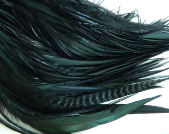 NATURAL BLACK VARIANT Feather Hair Extensions, Wide Tapered Long  Iridescent Hair Feathers, Select Your Size