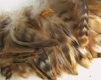 Red Chinchilla Rooster Feathers, Top Stitched Feather Fringe