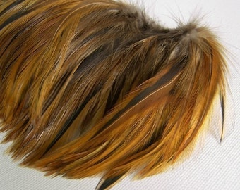 Red Furnace Rooster Feathers, Top Stitched Feather Fringe
