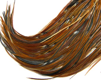 BOHO SKINNY RARE Banded Feather Hair Extensions, Natural Hair Feather Extensions