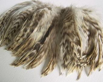 Grey Chinchilla Rooster Feathers, Top Stitched Feather Fringe