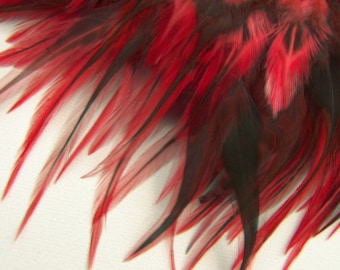 RED Badger Rooster Feathers, Top Stitched Feather Fringe