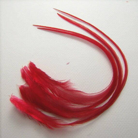 Items Similar To Ruby Red Feathers Wide Hair Extensions Red Rooster