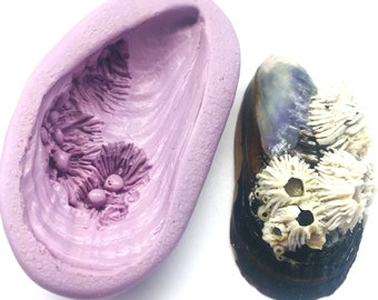 Mussel Shell with Barnacle Silicone Flex Mold - Cast your own shell for Candy, Fondant, Chocolate, Soap, Candle, Polymer Clay, Resin, PMC