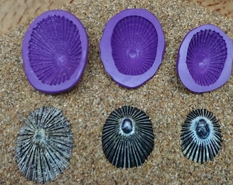 Silicone Flex Molds - Set of 3 Opihi Limpet Shells - Hawaii Shells - Cast your own with Candy, Chocolate,  Polymer Clay