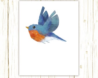 Eastern Bluebird Print -- bird art -- colorful bird art by stephanie fizer coleman illustration