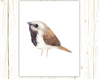 Black Throated Sparrow Print -- bird art -- colorful bird art by stephanie fizer coleman illustration