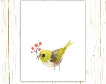 Silvereye Print -- bird art -- colorful bird art by stephanie fizer coleman illustration